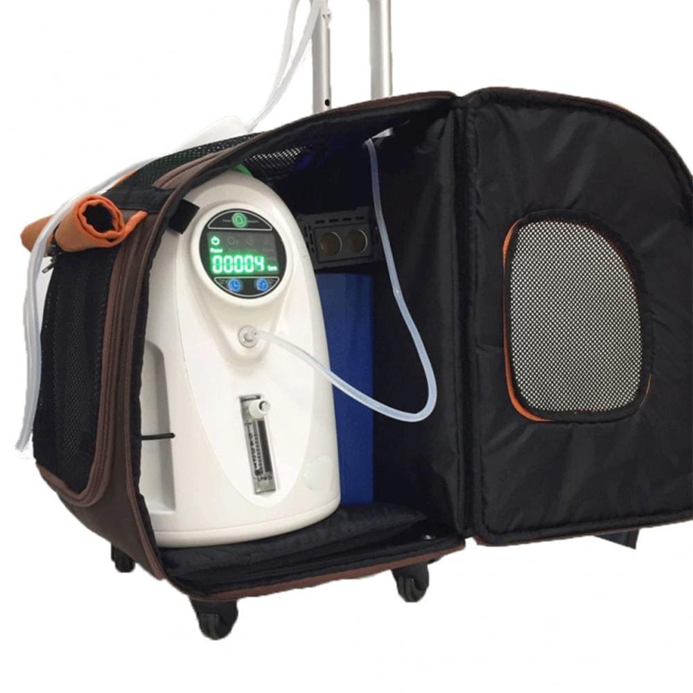 Устройство переносного концентратора Smart Portable