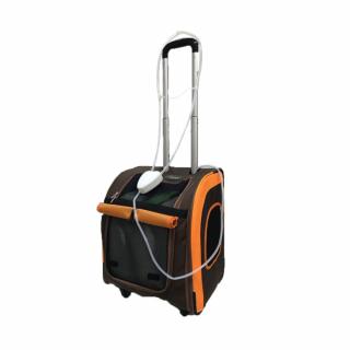 Smart Portable - мобильный концентратор