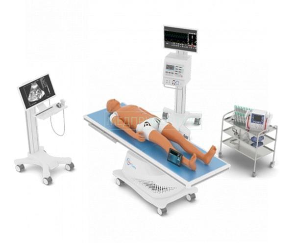 Гибридный комплект для обучения УЗИ с монитором и стойками