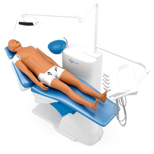 Гибридный стоматологический симулятор цена комплектации от производителя