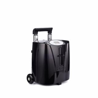 Концентратор кислорода Ventum LG103