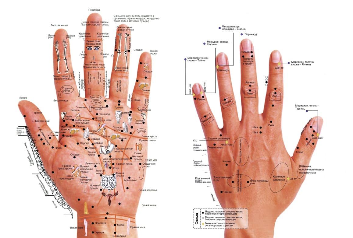 Карта массажа рук
